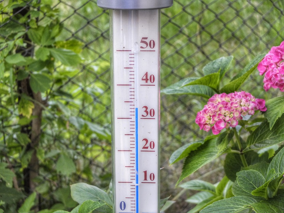 thermometer-398735_960_720